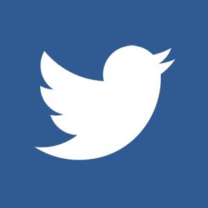 Twitter Button @IAO_Office21